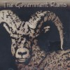Government Rams
