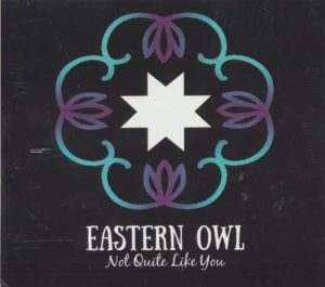 eastern owl - not quite like you.2